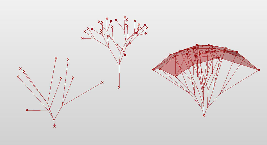 L Systems Creating 3d Branching Structures Morphocode